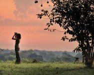 Birding at sunset