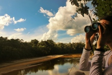 Observing primates across the river